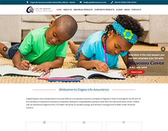 Web Design In Kenya By Nelium Systems - Home Of Quality Designs 5