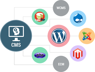 CMS WEB DEVELOPMENT - Nelium Systems