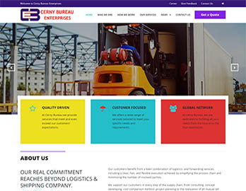Web Design In Kenya By Nelium Systems - Home Of Quality Designs 9